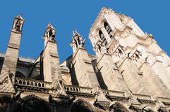 Notre Dame cathedral of Paris details Royalty Free Stock Images