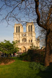 Notre Dame cathedral in Paris, France Royalty Free Stock Images