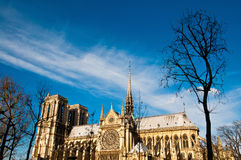 Notre Dame Cathedral in paris france Stock Images