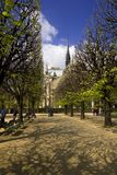 Notre Dame Cathedral, Paris, France. Notre Dame Cathedral and Spring foliage on sunny April day Stock Photography