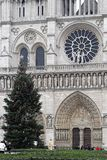 Notre Dame Cathedral. PARIS, FRANCE - JANUARY 6: Notre Dame Cathedral on JANUARY 6, 2010. Famous French Gothic Roman Catholic Church with big Chrismas tree in Royalty Free Stock Images