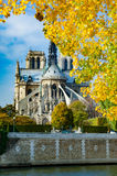 Notre Dame Cathedral, Paris. Paris, France. November 14, 2005. Notre Dame Cathedral Stock Image