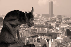 The Notre Dame cathedral of Paris gargoyle Royalty Free Stock Photo