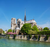 Notre Dame Cathedral in Paris in Spring Stock Photo