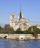Notre Dame Cathedral soaring into blue sky Stock Image