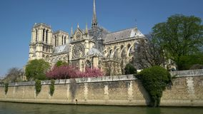 Notre Dame Cathedral rodeó por los árboles de florecimiento almacen de metraje de vídeo