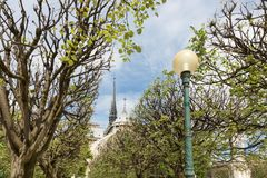 Notre Dame cathedral in springtime, Paris France Stock Photo