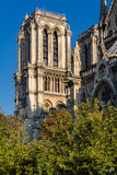 Notre Dame Cathedral Tower El la de Ile de cita, París, Francia Fotos de archivo libres de regalías