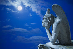 Notre Dame Chimeres nachts lizenzfreie stockbilder