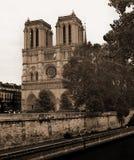 Notre Dame Church e Seine River em França com o EFF tonificado sepia fotos de stock royalty free