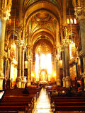 Notre Dame de fourviere basilicathe和河赛隆,利昂,法国 免版税库存照片