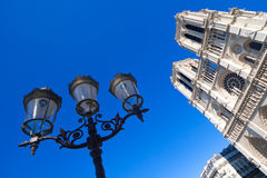 Notre Dame de Parigi Fotografia Stock