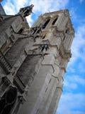 Notre dame DE Parijs, Frankrijk Stock Fotografie