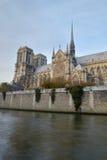Notre Dame de Paris Fotografia Stock Libera da Diritti