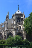 Notre-Dame de Paris Photo libre de droits