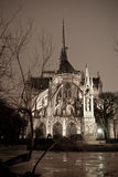 Notre Dame de Paris. In Paris at night from backyard Royalty Free Stock Photography