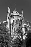 Notre-Dame de Paris Imágenes de archivo libres de regalías