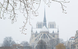 Notre-Dame de Paris. On a snowy day Stock Photos