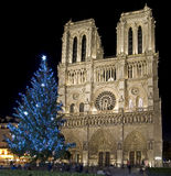 Notre Dame de Paris 4 Royalty Free Stock Images