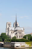 Notre Dame de Paris Foto de Stock Royalty Free
