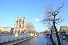 Notre Dame de Paris Stockfoto
