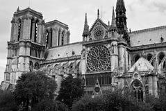 Notre Dame de Paris. Monochrome. Paris, France Stock Photos