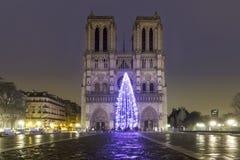 Notre Dame de Paris au-dessus du fleuve de Seine Photo libre de droits