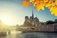 Notre Dame de Paris and autumn leaves, France Stock Images