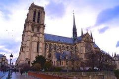 Notre Dame de Paris avec des oiseaux image libre de droits
