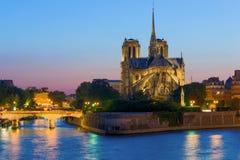 Notre Dame de Paris bij nacht Stock Afbeelding