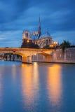 Notre Dame de Paris bij zonsondergang stock foto's