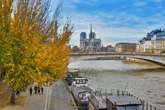 Notre-Dame de Paris on a bright fall day Stock Images