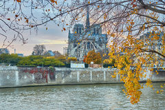 Notre-Dame de Paris on a bright fall day Royalty Free Stock Photo