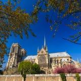Notre Dame de Paris. Cathedral, France Stock Image