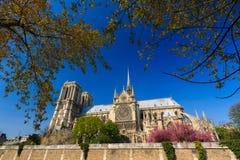 Notre Dame de Paris. Cathedral, France Stock Images
