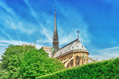 Notre Dame de Paris Cathedral, most beautiful Cathedral in Paris Stock Image