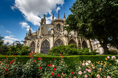 Notre Dame de Paris Cathedral with Red and White Roses Royalty Free Stock Photos