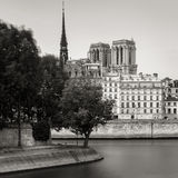Notre Dame de Paris Cathedral torn och Seine River bank Arkivfoton