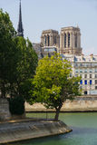 Notre Dame de Paris Cathedral torn, Seine River i sommar france Royaltyfri Foto