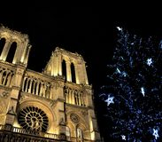 Notre-Dame de Paris at Christmas Royalty Free Stock Photo