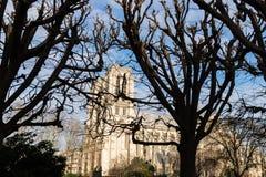 Notre Dame de Paris dalla Francia Immagine Stock Libera da Diritti