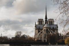 Notre Dame de Paris dans des Frances de Paris Photo stock