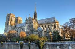 Notre Dame de Paris dans la première lumière images stock
