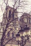 Notre Dame de Paris dans les Frances, façade Photographie stock libre de droits