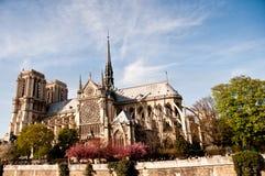 Notre Dame de Paris de la catedral Imágenes de archivo libres de regalías