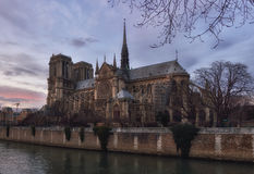 Notre Dame de Paris at dusk Stock Images