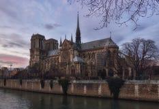 Notre Dame de Paris at dusk Stock Images
