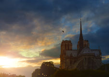 Notre Dame de Paris at dusk, France. Royalty Free Stock Image