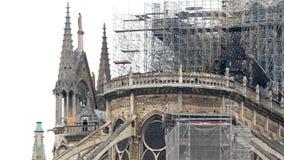 Notre Dame De Paris efter branden stock video