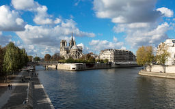 Notre Dame de Paris en Zegenrivier stock afbeelding